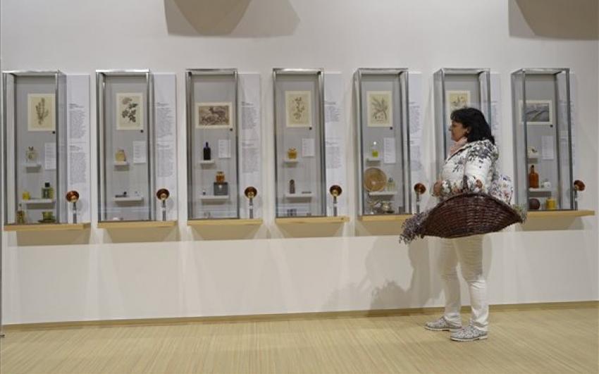 Átadták az ország első illatmúzeumát Pannonhalmán