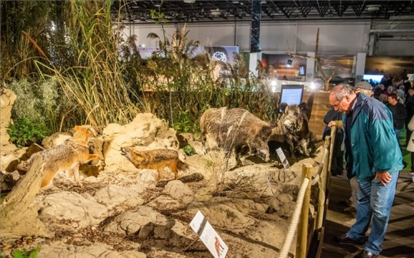 A Hungarikum Gálával véget ért a vadászati világkiállítás