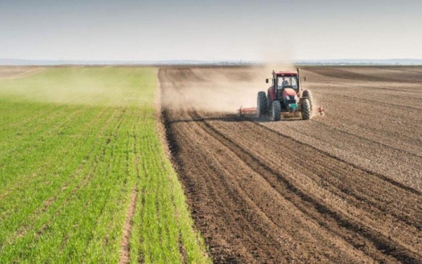 Takarékbank: további drágulásra számítanak az agrárium szereplői